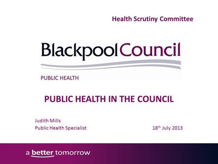 PUBLIC HEALTH IN THE COUNCIL Judith Mills Public Health Specialist 18 th July 2013 Health Scrutiny Committee.