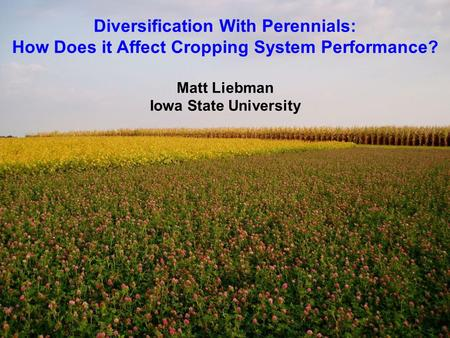Diversification With Perennials: