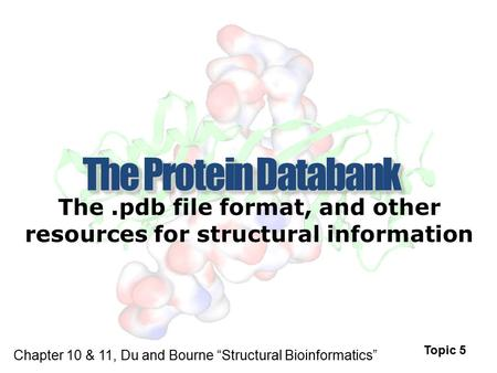 "The.pdb file format, and other resources for structural information Topic 5 Chapter 10 & 11, Du and Bourne ""Structural Bioinformatics"""