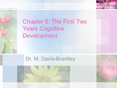 Chapter 6: The First Two Years Cognitive Development Dr. M. Davis-Brantley.