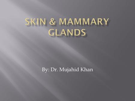 By: Dr. Mujahid Khan.  The skin is a membranous protective covering of the body  Is a complex organ system  It consists of two layers derived from.