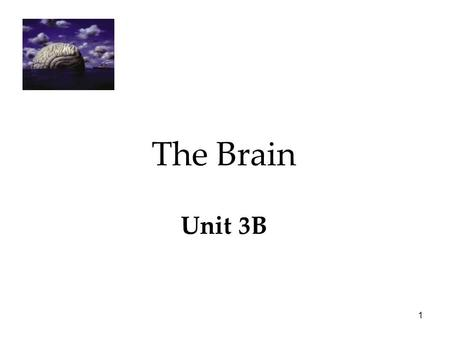 1 The Brain Unit 3B. 2 The Brain  The Tools of Discovery  Older Brain Structures  The Cerebral Cortex  Our Divided Brain  Left Brain-Right Brain.