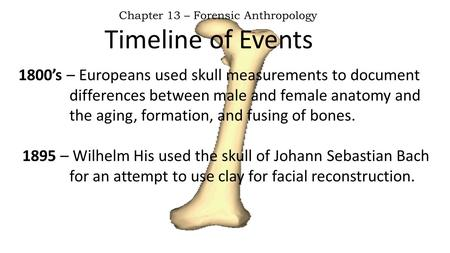 Timeline of Events Chapter 13 – Forensic Anthropology 1800's – Europeans used skull measurements to document differences between male and female anatomy.