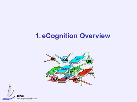 1.eCognition Overview. 1 eCognition eCognition is a knowledge utilisation platform based on Active Knowledge Network technology eCognition covers the.