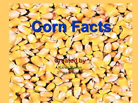 Corn Facts Created by Karen Bazan 2 nd grade teacher.
