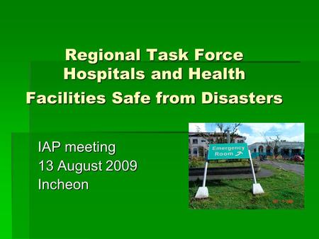 Regional Task Force Hospitals and Health Facilities Safe from Disasters IAP meeting 13 August 2009 Incheon.