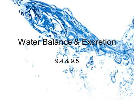Water Balance & Excretion 9.4 & 9.5. Osmoregulation active regulation of the osmotic pressure of bodily fluids and cells osmotic pressure = pressure resulting.