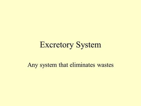 Excretory System Any system that eliminates wastes.