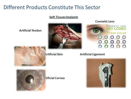 Artificial Tendon Artificial Skin Artificial Ligament Artificial Cornea Soft Tissues Implants Different Products Constitute This Sector Cosmetic Lens.