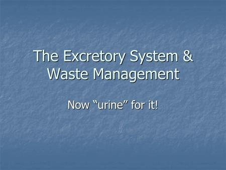 "The Excretory System & Waste Management Now ""urine"" for it!"