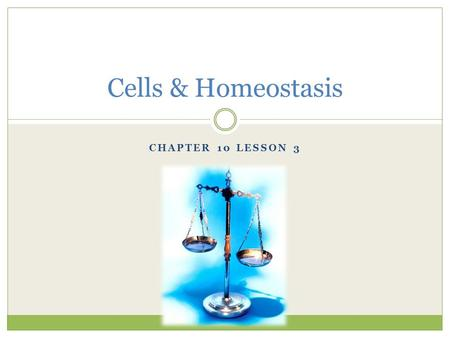 Cells & Homeostasis Chapter 10 Lesson 3.