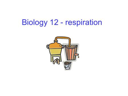 Biology 12 - respiration. Cellular respiration Provides energy for the cell Occurs in all cells Net equation: glucose + oxygen  carbon dioxide + water.