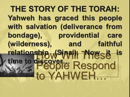 How Will These People Respond to YAHWEH… THE STORY OF THE TORAH: Yahweh has graced this people with salvation (deliverance from bondage), providential.