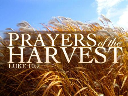 Prayers of the Harvest. Praying For Fellow Laborers Key Text: Luke 10:1-12 For More Laborers To Join The Harvest –Vs. 2 For Welcome Reception –Vs. 3-9.