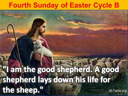 Fourth Sunday of Easter Cycle B