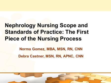 Nephrology Nursing Scope and Standards of Practice: The First Piece of the Nursing Process Norma Gomez, MBA, MSN, RN, CNN Debra Castner, MSN, RN, APNC,