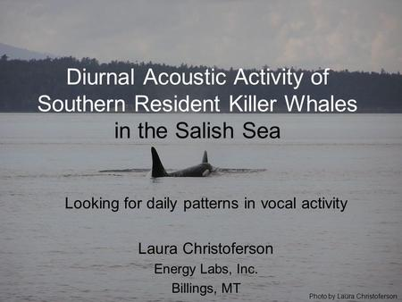 Diurnal Acoustic Activity of Southern Resident Killer Whales in the Salish Sea Looking for daily patterns in vocal activity Laura Christoferson Energy.