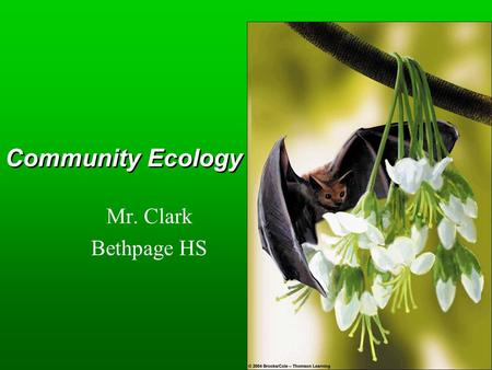 Community Ecology Mr. Clark Bethpage HS. Key Concepts  Community structure  Roles of species  Species interactions  Changes in ecosystems  Stability.