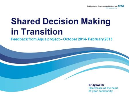 Shared Decision Making in Transition Feedback from Aqua project – October 2014- February 2015.