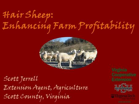Hair Sheep: Enhancing Farm Profitability