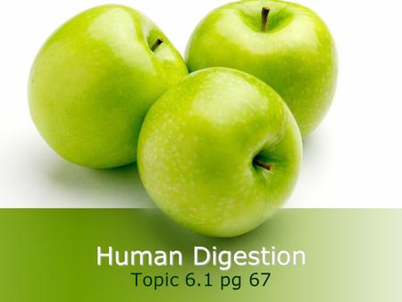 Human Digestion Topic 6.1 pg 67.