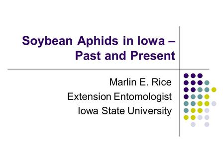 Soybean Aphids in Iowa – Past and Present Marlin E. Rice Extension Entomologist Iowa State University.