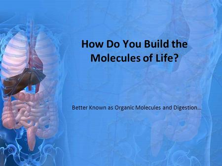 How Do You Build the Molecules of Life? Better Known as Organic Molecules and Digestion…