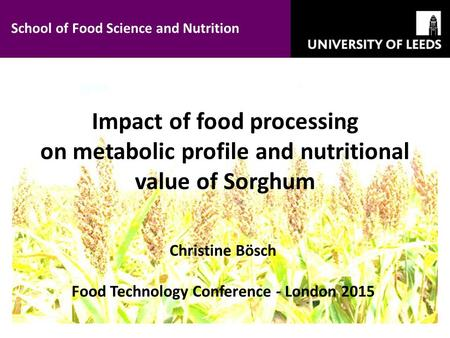 Impact of food processing on metabolic profile and nutritional value of Sorghum Christine Bösch Food Technology Conference - London 2015 School of Food.