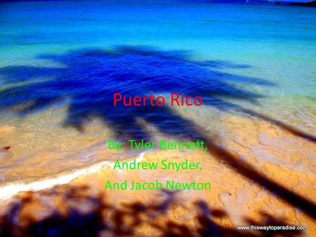 Puerto Rico By: Tyler Bennett, Andrew Snyder, And Jacob Newton.