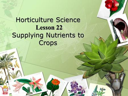 Horticulture Science Lesson 22 Supplying Nutrients to Crops.
