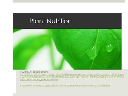 Plant Nutrition Powerpoint adopted from:  Powerpoint%2520files/35Ch37PlantNutrition2005a.pdf+ap+biology+plant+nutrition&hl=en&ct=clnk&c.