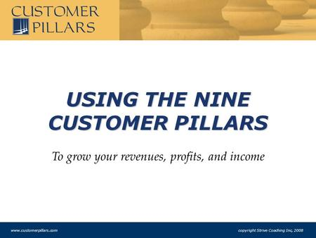 USING THE NINE CUSTOMER PILLARS To grow your revenues, profits, and income www.customerpillars.com copyright Strive Coaching Inc, 2008.