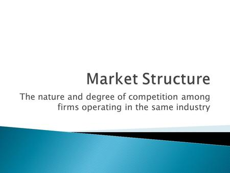 Market Structure The nature and degree of competition among firms operating in the same industry.