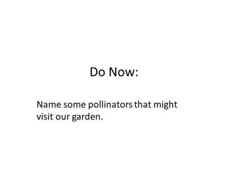 Do Now: Name some pollinators that might visit our garden.