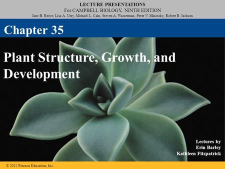 Plant Structure, Growth, and Development