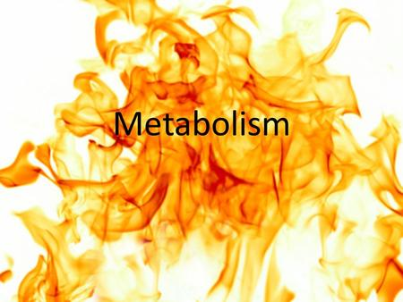Metabolism. Do We Have Enough Energy? Nutrients and regulation of appetite Carbohydrate metabolism Lipid and protein metabolism Metabolic states.