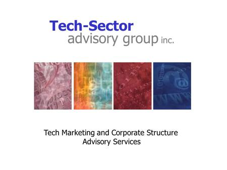 Tech-Sector Tech Marketing and Corporate Structure Advisory Services advisory group inc.