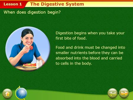 Lesson 1 When does digestion begin? Digestion begins when you take your first bite of food. The Digestive System Food and drink must be changed into smaller.