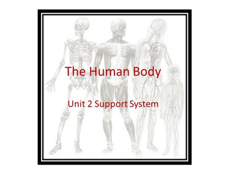 The Human Body Unit 2 Support System. Anatomy and Physiology Anatomy: The study of structures and the relationship of structures to each other. (What.