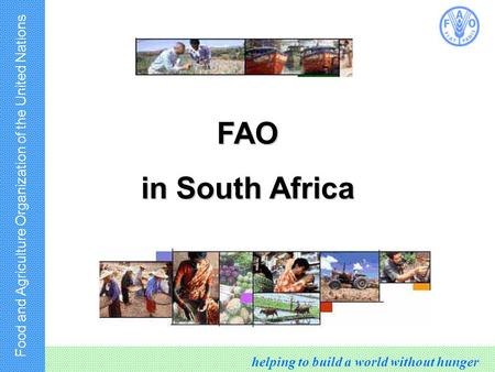 Food and Agriculture Organization of the United Nations helping to build a world without hunger FAO in South Africa.