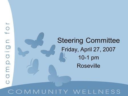 Steering Committee Friday, April 27, 2007 10-1 pm Roseville.
