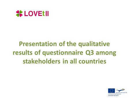 Presentation of the qualitative results of questionnaire Q3 among stakeholders in all countries.