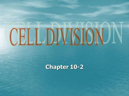 Chapter 10-2. Chromosomes are not visible in cells until cells begin the process of cell division. Chromosomes are not visible in cells until cells begin.