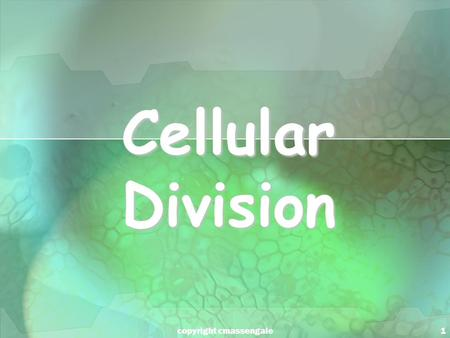 1 Cellular Division copyright cmassengale. 2 Cell Division All cells are derived from pre- existing cells All cells are derived from pre- existing cells.