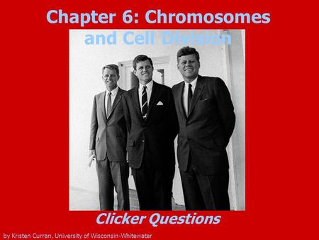 Chapter 6: Chromosomes and Cell Division