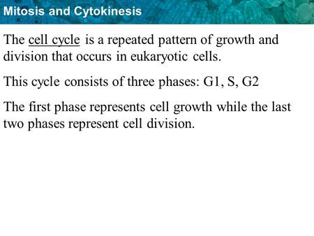 This cycle consists of three phases: G1, S, G2