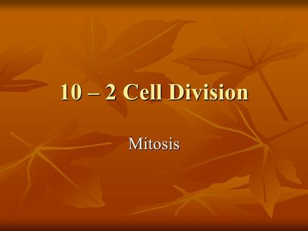 10 – 2 Cell Division Mitosis. Chromosomes DNA is passed on in chromosomes DNA is passed on in chromosomes Every organism has a specific # of chromosomes: