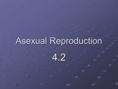 Asexual Reproduction 4.2. I. Asexual Reproduction A.Asexual Reproduction- A new organism is produced from one parent 1. The new organism is identical.
