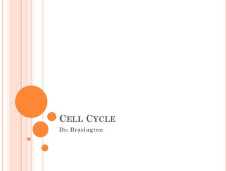 C ELL C YCLE Dr. Brasington. S OMATIC CELL DIVISION The process of a cell dividing into 2 identical daughter cells. Occurs when cells reach a certain.