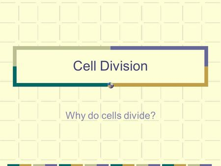 Cell Division Why do cells divide?. Cells must divide in order for the surface area (cell membrane) to keep up with the volume of the cell.